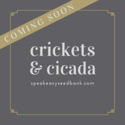 Crickets and Cicada Seeds Collection